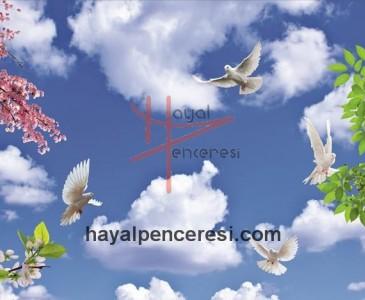 Kuşlar ve Gökyüzü